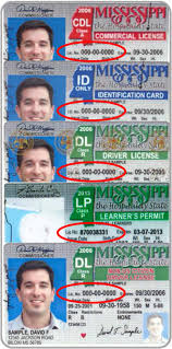 Information Driver's Mississippi License And Id Card