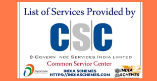 services provided by csc 2020