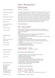 Sample Resume Of Ceo 24 Award Winning CEO Resume Templates WiseStep 10