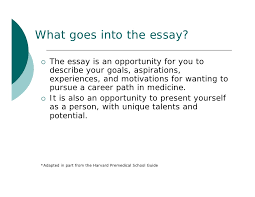 my career essay choose my career essay