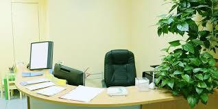 go green office furniture. Image : Shutterstock Go Green Office Furniture