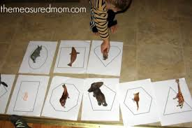 Best 25  Preschool farm theme ideas on Pinterest   Farm activities additionally 55 best Letter G Crafts images on Pinterest   Preschool activities additionally  additionally  additionally  in addition Zoo and Animals Preschool Activities and Printables   KidsSoup together with Farm animals craft idea for kids   Crafts and Worksheets for as well  besides Best 25  Zoo animal activities ideas on Pinterest   Zoo crafts moreover  as well 259 best Farm Preschool Theme images on Pinterest   Farm. on best farm activities ideas on pinterest preschool animals theme images art lessons f is for letter printables worksheets
