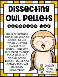 Owl Pellet Worksheets Teaching Resources Teachers Pay