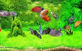 moving fish wallpaper windows 7. Screenshot Throughout Moving Fish Wallpaper Windows