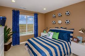 Amazing Bedroom:Soccer Decor Foredroom Gorgeous Photos Ideas The Perfect Themed Room  Your Athlete Villageoyssoccer 98