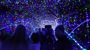 La Zoo Lights 2018 Tickets 47 Things To Do In Los Angeles In December 2019