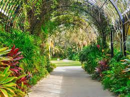 florida digital art mckee botanical garden xiii by tina baxter