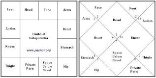Birth Chart South Indian Style South And North Indian Chart Styles And House Bhava
