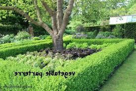 parterre garden parterre vegetable garden design great parterre vegetable garden design 1 parterre garden plants parterre garden