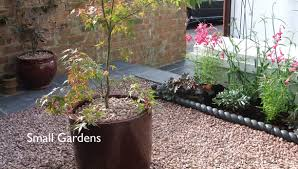 Small Picture Neat low maintenance front garden ideas Pinterest Garden