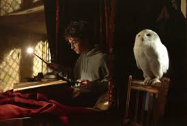 the fascinating etymology behind harry potter character s the fascinating etymology behind harry potter character s pottermore