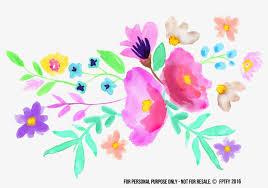 spring watercolor flowers png