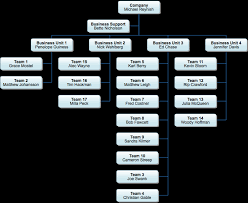 Business Organizational Chart Extraordinary Organization Chart Extension