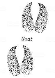 ヤギのフット プリント イラスト デッサン彫刻インクライン アート