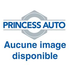 autobody tools princess auto