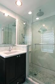 Evanston small master Traditional Bathroom Chicago by MAKS