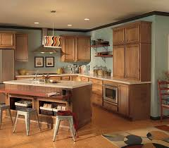 kitchen cabinets to go amazing with photo of kitchen cabinets property in ideas