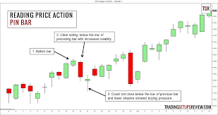 Reading Price Charts Beginners Guide To Reading Price Action Trading Setups Review