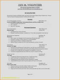 Type A Resume Awesome Formats For Resumes Awesome 2 Resume Types