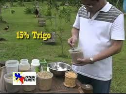 Hataw Pinoy Dr Teddy Tanchanco Feed Regimen 21 Days Keep