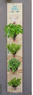 Hanging Kitchen Herb Garden Diy Indoor Herb Garden Ideas