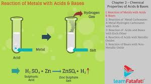 acid bases and salts class 10 science cbse chemical properties of acids and bases you