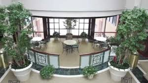 interior landscaping office. Welcome To Botanicus Interior Landscaping Office