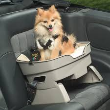 40 best of images of best dog car harness best fence gallery inspiration for you