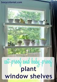 build a diy window plant shelf cat resistant