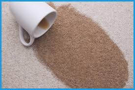 getty 56a4e88a5f9b58b7d0d9d756 this how to remove coffee stains from carpet from how to remove dog