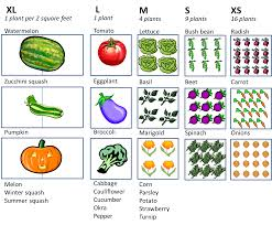Small Picture Square Foot Vegetable Garden Plan Layout With 1 4 9 Or 16