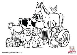 Farm Animal Color Pages Typical Baby Farm Animal Coloring Pages Free
