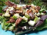 apple gorgonzola salad with balsamic vinaigrette