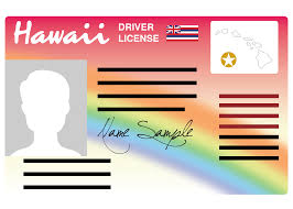 Licenses Permits Licenses Permits Passes And