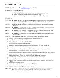 Entrepreneur Job Description For Resume Sample Resume Of Sales Representative Free Example And Examples 9