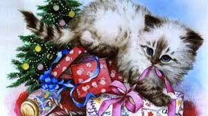 Christmas Gifts Cats