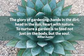 Quote Garden Classy Quote Garden Quotes