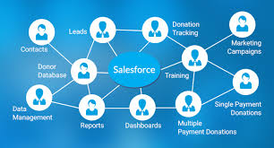 How A Nonprofit Uses Salesforce To Grow Sales Appshark