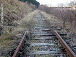 De la Straja către Putna pe calea ferată și prin păduri | Articole | Orașul SUCEAVA