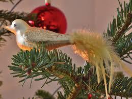 Christbaumschmuck Vogel Tannenbaum Kostenloses Foto Auf