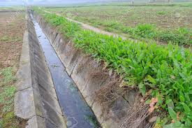 drainage ditch drainage ditch stock photo picture and royalty free image image