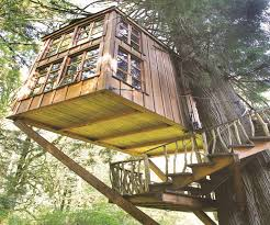 Top Tree House Ideas