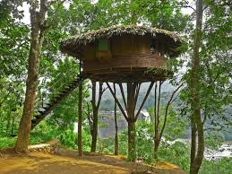 Creativity Tree House Plans For Two Trees With Design Decorating