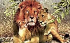 big cats lions painting art three 3 s lion wallpaper