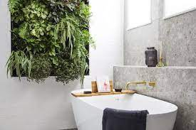 See more ideas about small bathroom, bathroom decor, home diy. 35 Bathroom Plants For You Indoor And Hanging Plants