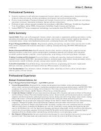 well written essay example professional summary on resume  well