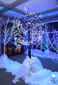 Winter Wonderland Ball Decorations Winter wonderland taking the plunge Pinterest Winter Sweet 2