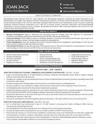 Management Cv Management Cv Writing Service