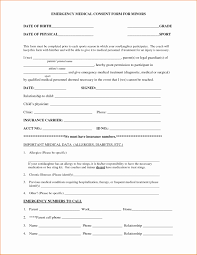 14 New Nanny Contract Template Word | Contract Template Collection
