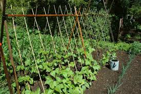small vegetable garden space savers